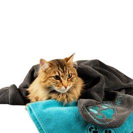 Show Tech – מגבת מייקרופייבר לכלבים וחתולים – מספרות
