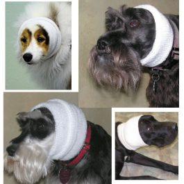 Happy Hoodie – 'קפוצ'ון' לכיסוי אוזני הכלבים גם בזמן היבוש