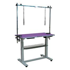 Ibanez – שולחן חשמלי משטח סגול BELLA 110X60cm